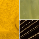 Can You Guess What These Close Ups Of Everyday Objects